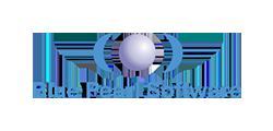 Bluepearl client color logo