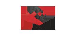 Netensity client color logo