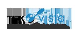Tekvista client color logo